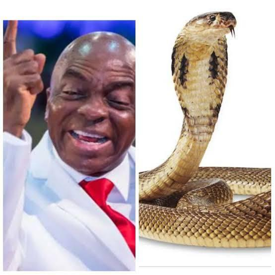 """""""I was in my office and a cobra was found in my wardrobe"""" - Bishop David Oyedepo"""